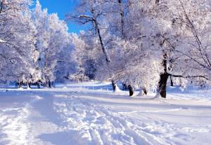 зимняя сказка4