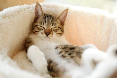 Умение расслабляться
